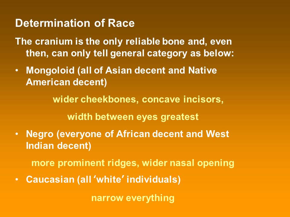 Determination of Race The cranium is the only reliable bone and, even then, can only tell general category as below: