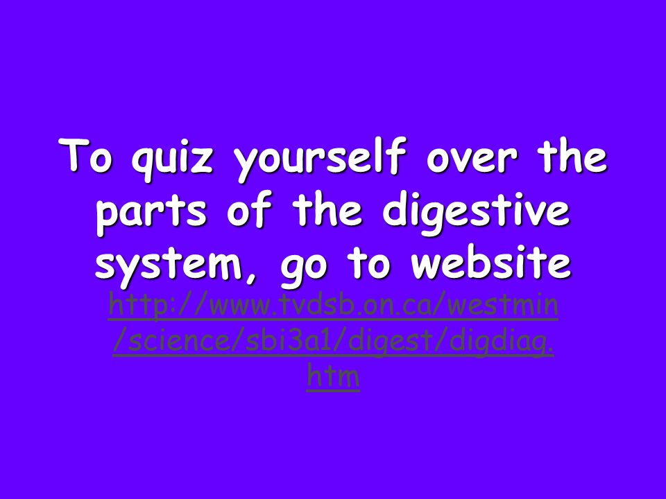 To quiz yourself over the parts of the digestive system, go to website