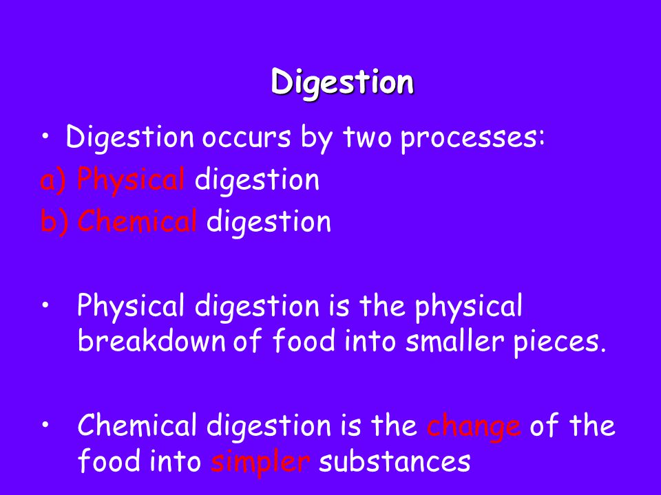 Digestion Digestion occurs by two processes: Physical digestion