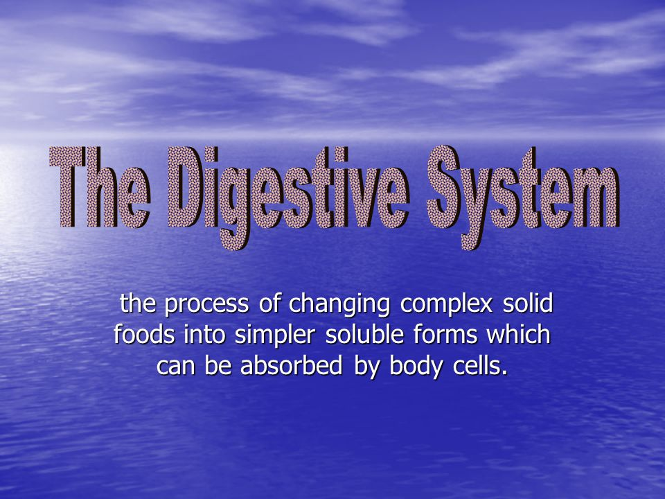 The Digestive System the process of changing complex solid foods into simpler soluble forms which can be absorbed by body cells.