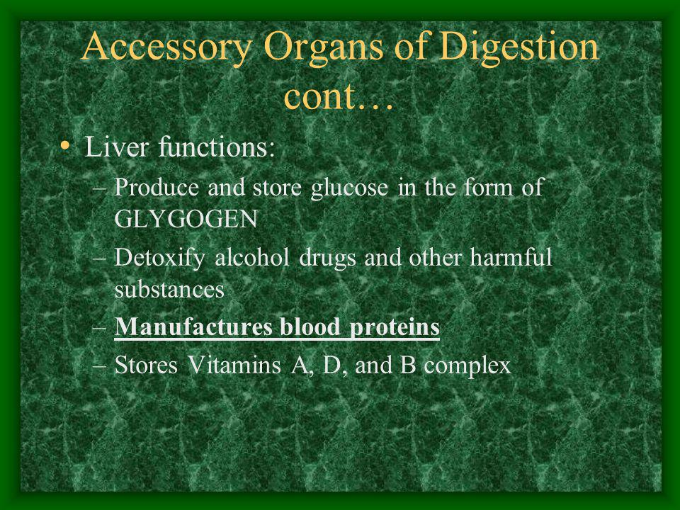 Accessory Organs of Digestion cont…