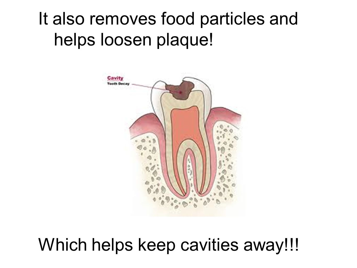 It also removes food particles and helps loosen plaque!