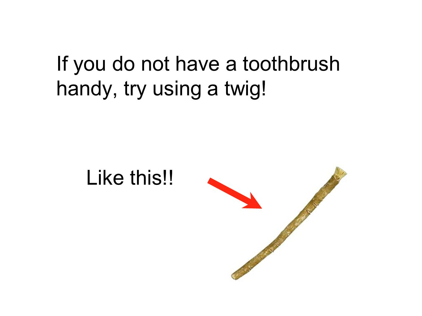 If you do not have a toothbrush handy, try using a twig!