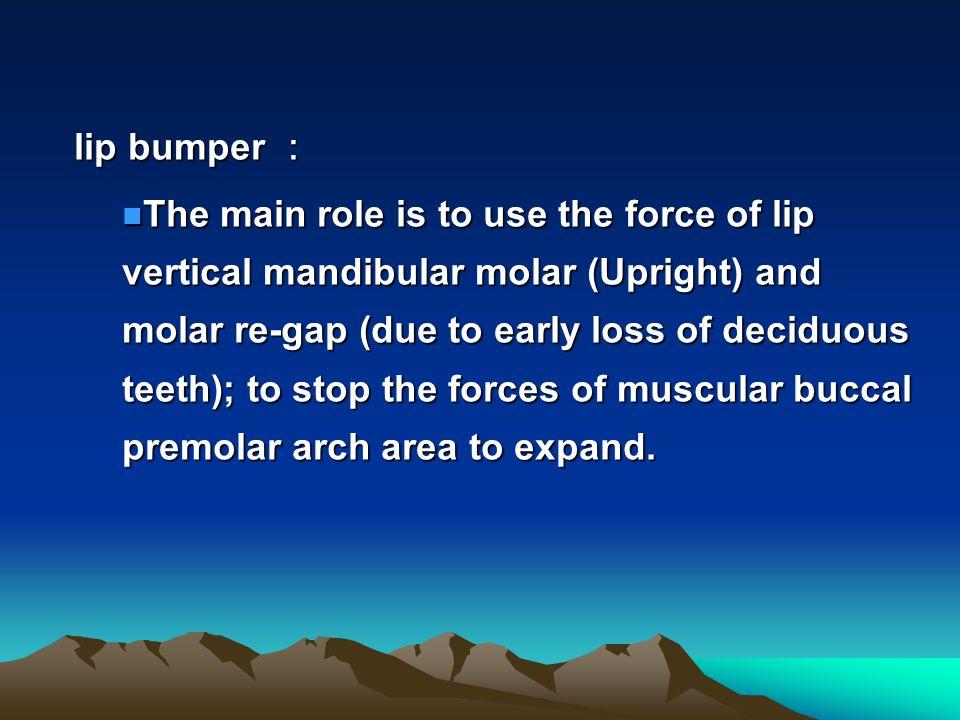 lip bumper :