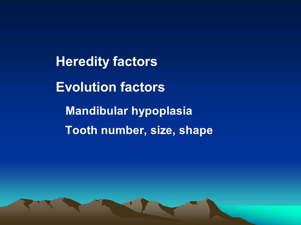 Heredity factors Evolution factors