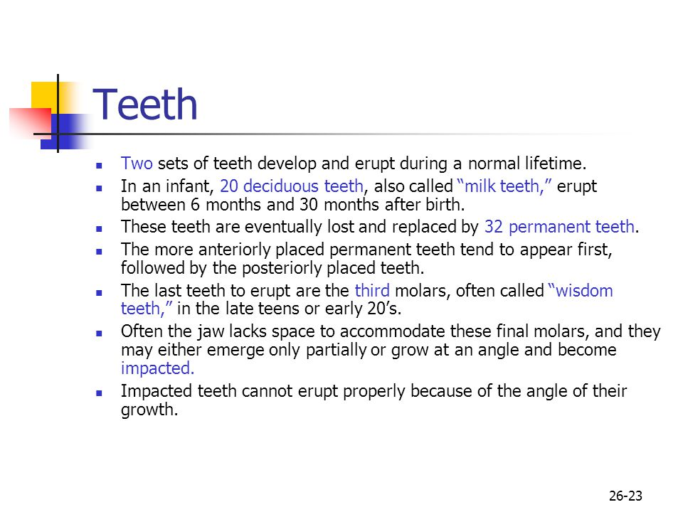 Teeth Two sets of teeth develop and erupt during a normal lifetime.