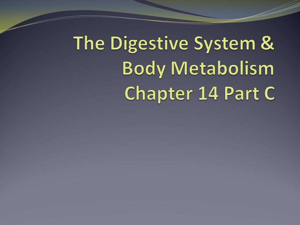 The Digestive System & Body Metabolism Chapter 14 Part C