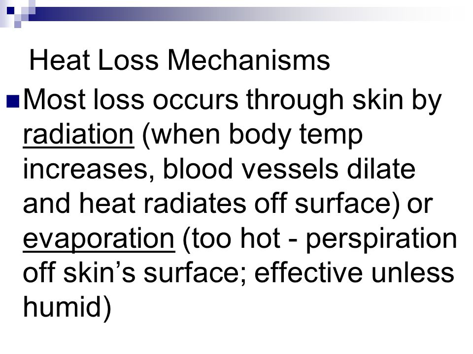 Heat Loss Mechanisms