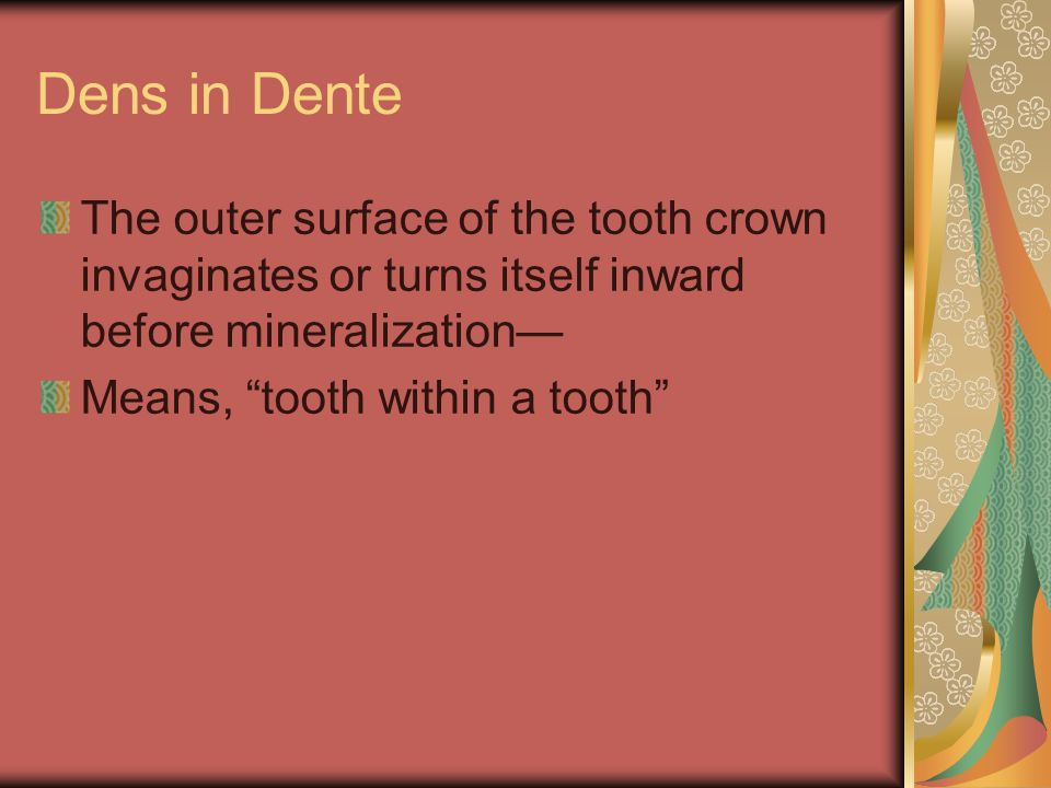 Dens in Dente The outer surface of the tooth crown invaginates or turns itself inward before mineralization—