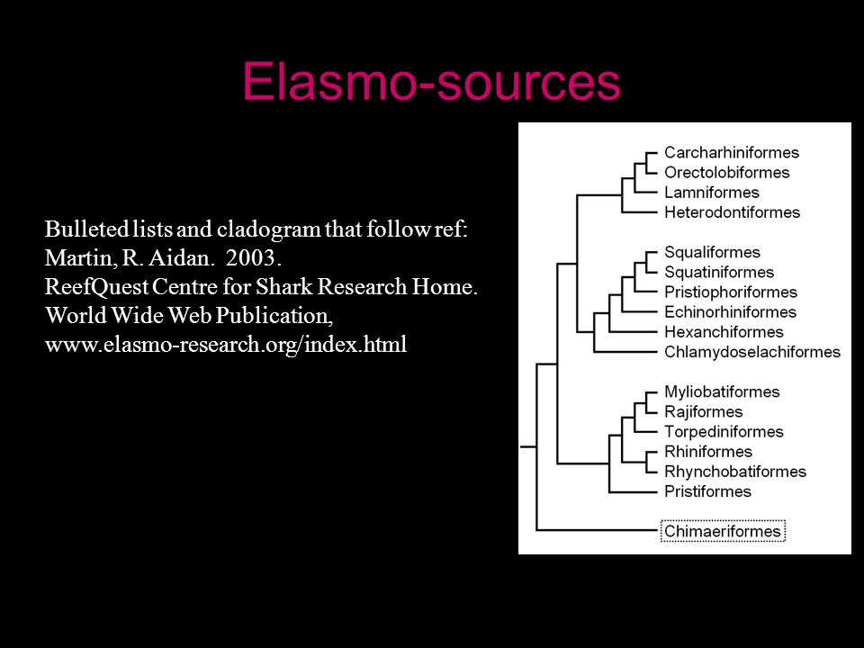Elasmo-sources Bulleted lists and cladogram that follow ref: