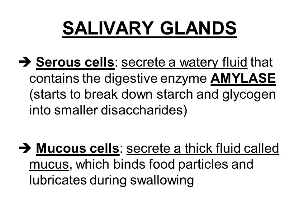 salivary enzymes react with starch For example, human saliva and pancreatic secretion contain a large amount of   the hydrolysis reaction catalyzed by this class of enzymes is usually carried.