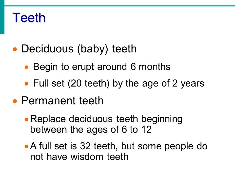 Teeth Deciduous (baby) teeth Permanent teeth