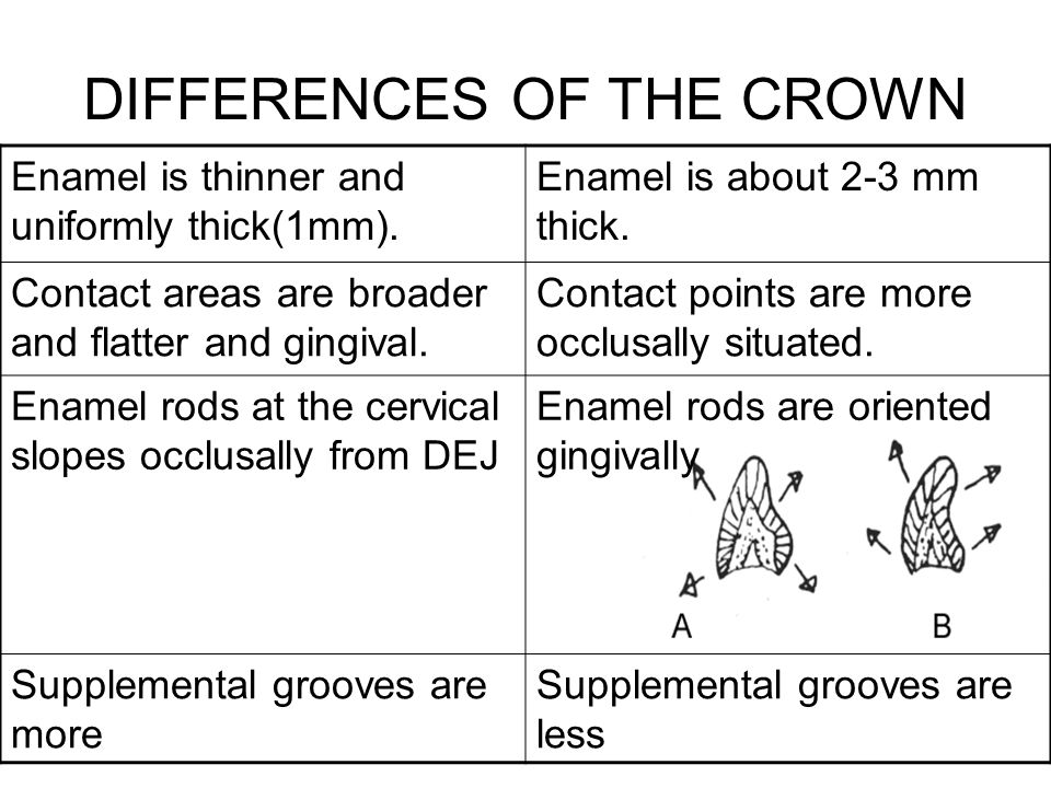 DIFFERENCES OF THE CROWN
