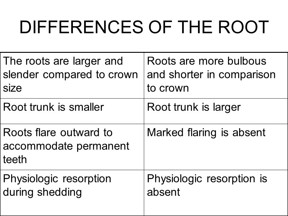 DIFFERENCES OF THE ROOT