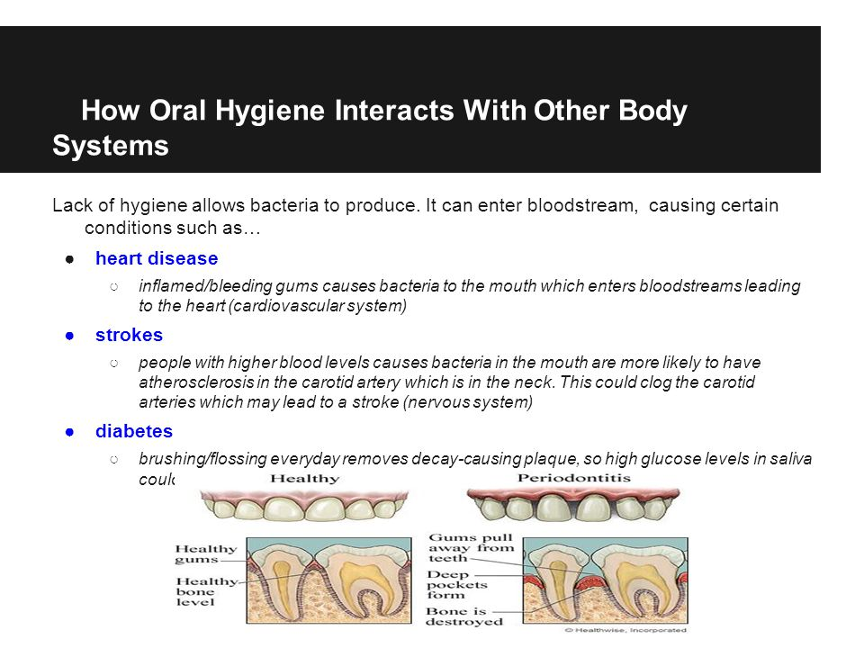 How Oral Hygiene Interacts With Other Body Systems