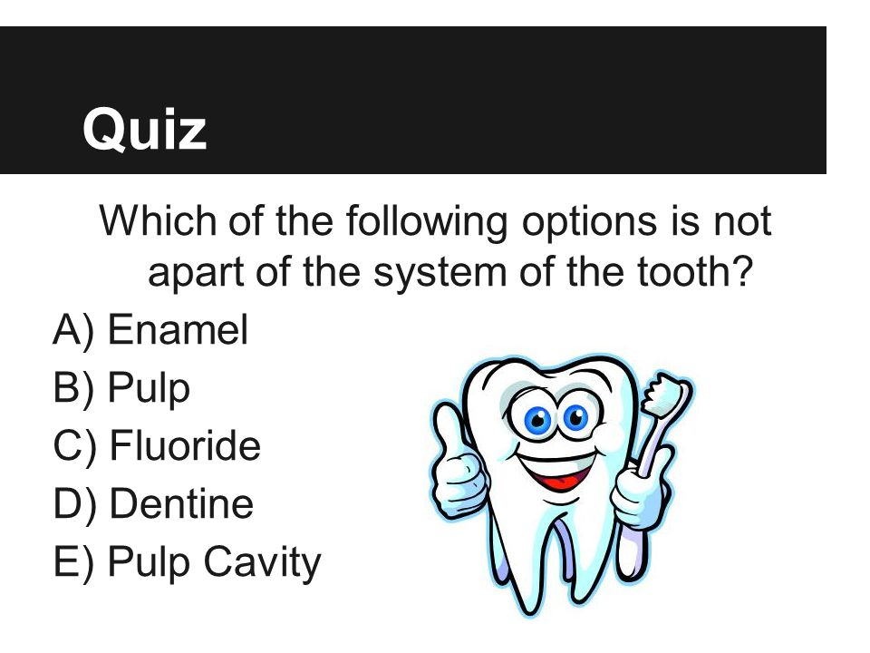 Quiz Which of the following options is not apart of the system of the tooth A) Enamel. B) Pulp.