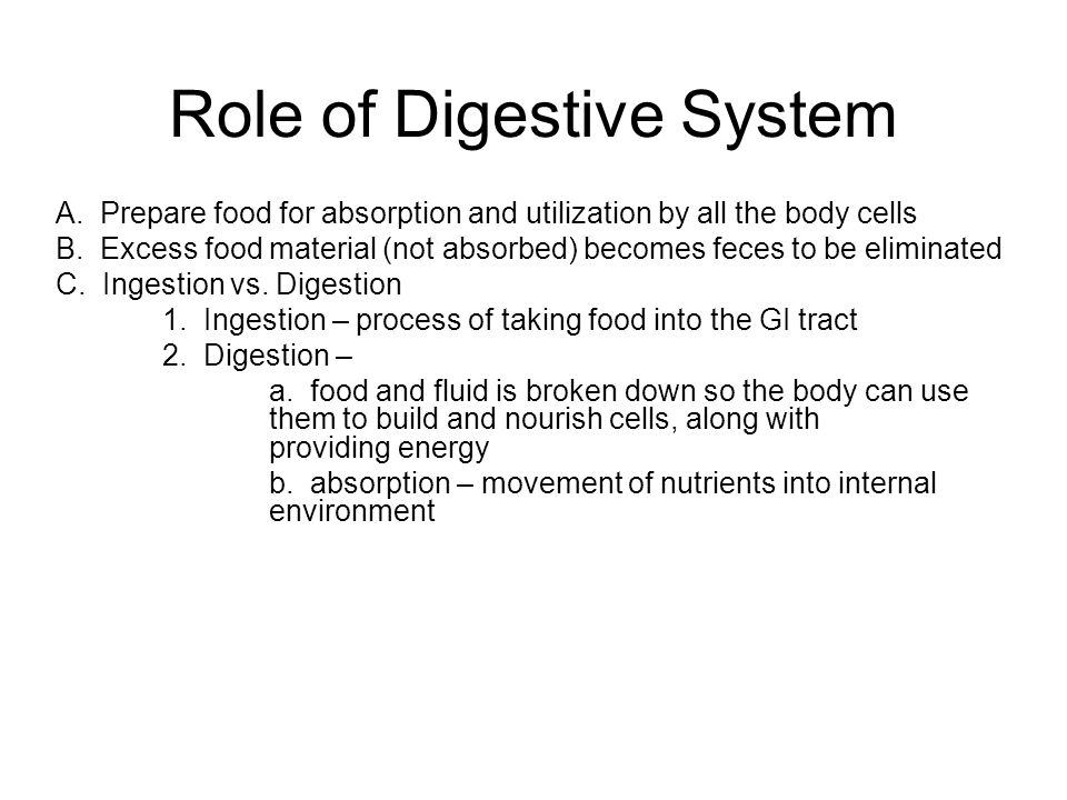 Role of Digestive System