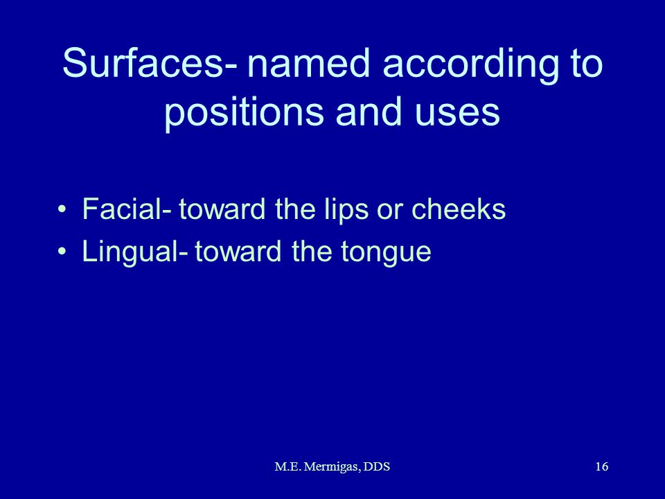 Surfaces- named according to positions and uses