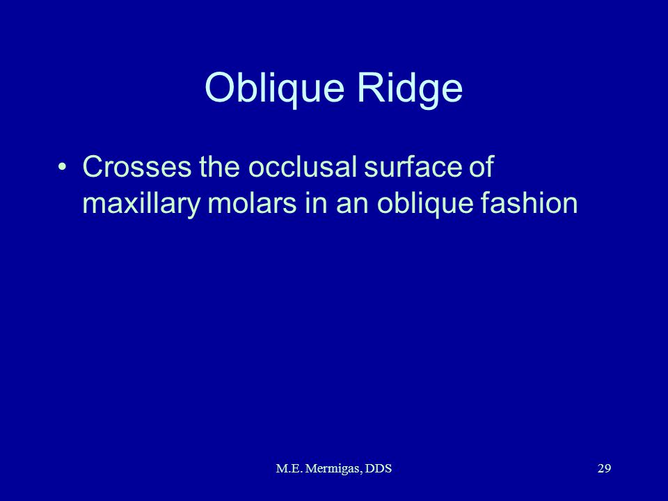 Oblique Ridge Crosses the occlusal surface of maxillary molars in an oblique fashion.