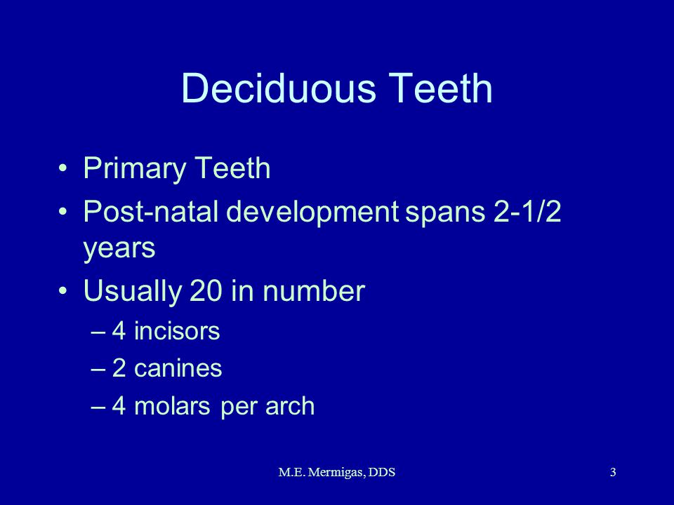 Deciduous Teeth Primary Teeth Post-natal development spans 2-1/2 years