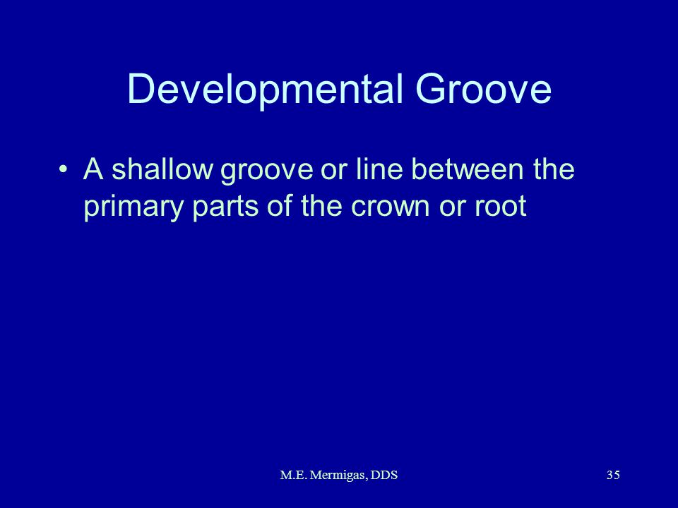 Developmental Groove A shallow groove or line between the primary parts of the crown or root.