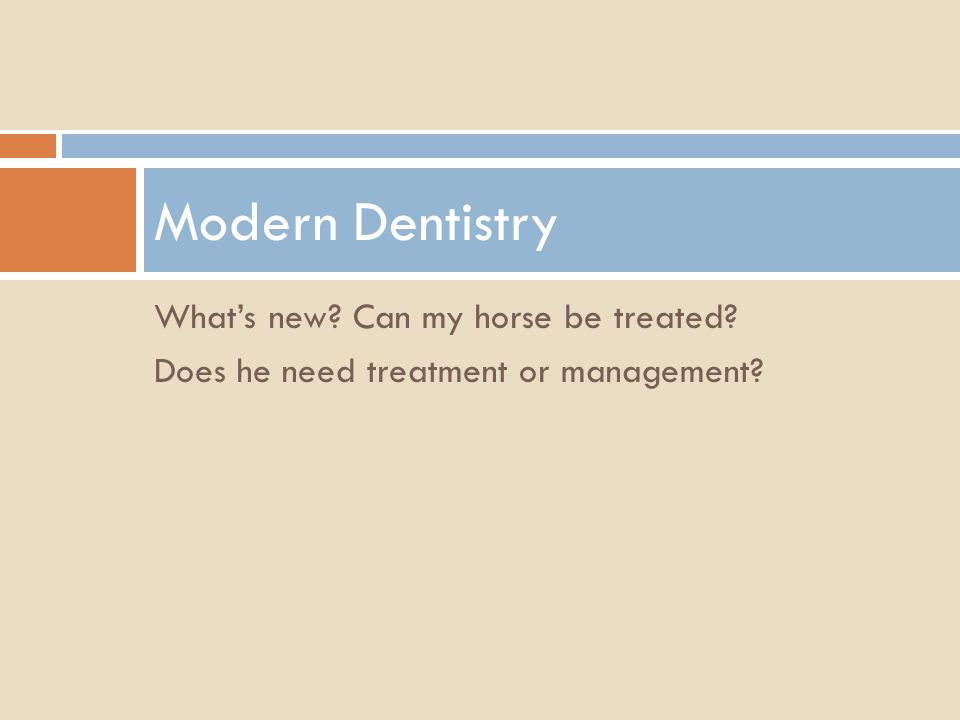 Modern Dentistry What's new Can my horse be treated