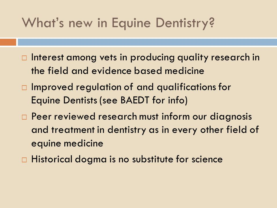 What's new in Equine Dentistry