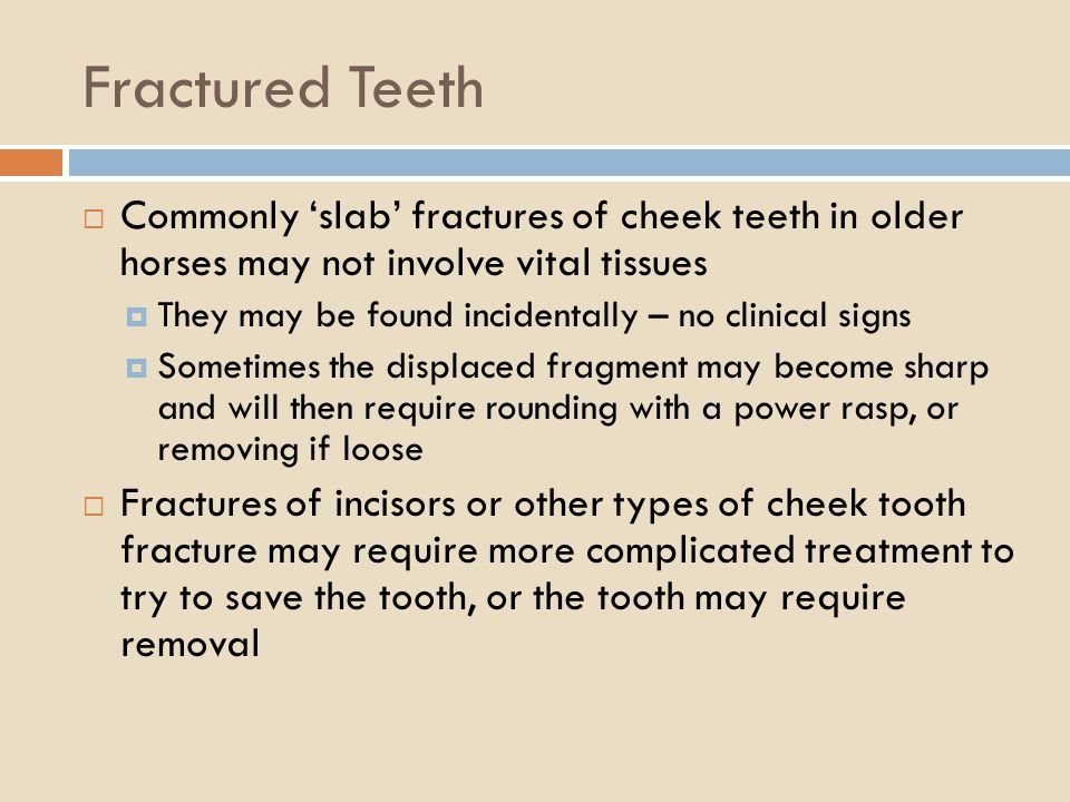Fractured Teeth Commonly 'slab' fractures of cheek teeth in older horses may not involve vital tissues.