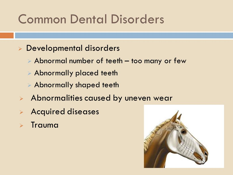 Common Dental Disorders