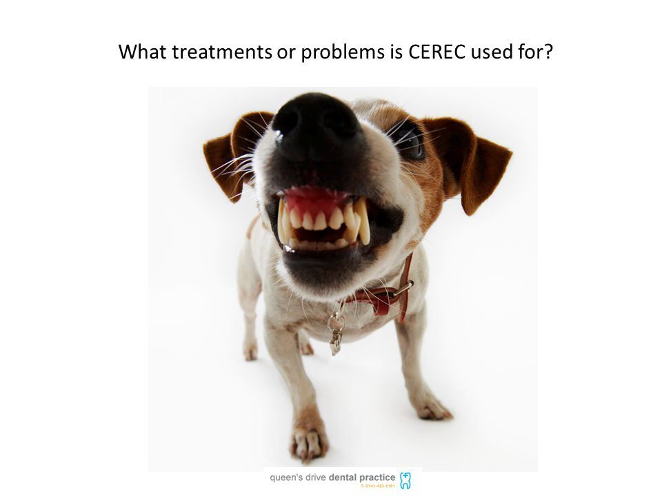 What treatments or problems is CEREC used for
