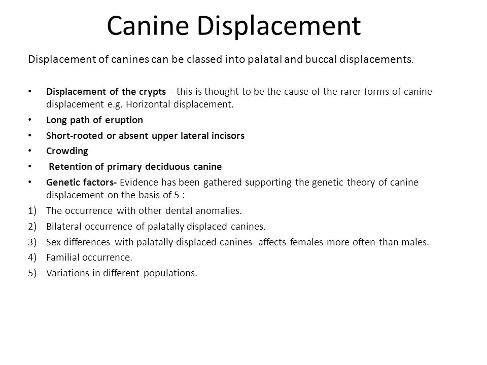 Canine Displacement Displacement of canines can be classed into palatal and buccal displacements.