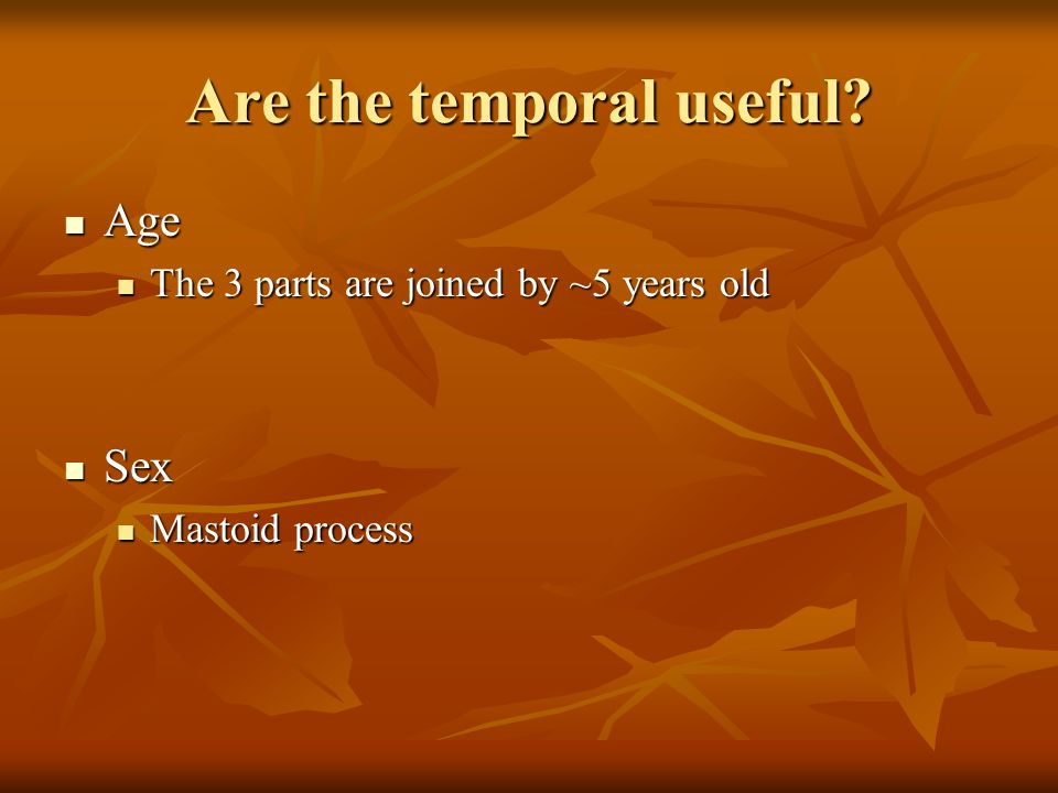 Are the temporal useful