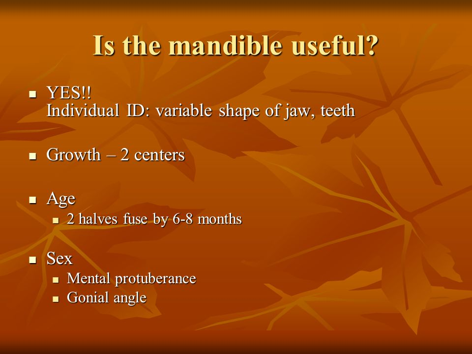 Is the mandible useful YES!! Individual ID: variable shape of jaw, teeth. Growth – 2 centers. Age.