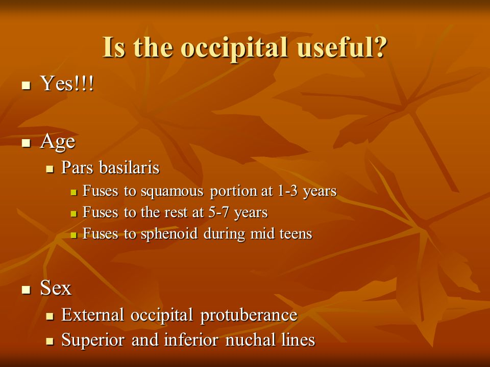 Is the occipital useful