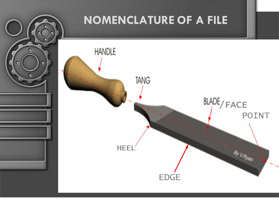 NOMENCLATURE OF A FILE /FACE POINT HEEL EDGE