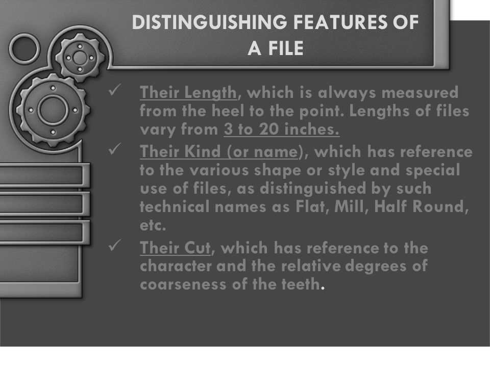 DISTINGUISHING FEATURES OF A FILE