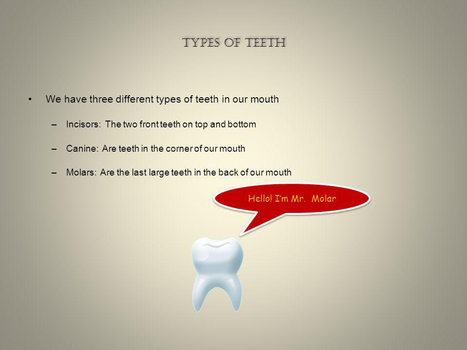 Types of teeth We have three different types of teeth in our mouth
