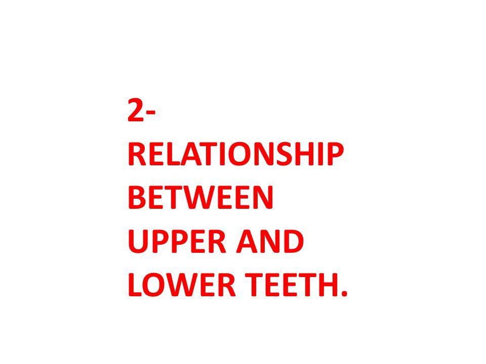 2-RELATIONSHIP BETWEEN UPPER AND LOWER TEETH.
