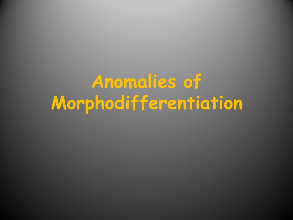 Anomalies of Morphodifferentiation