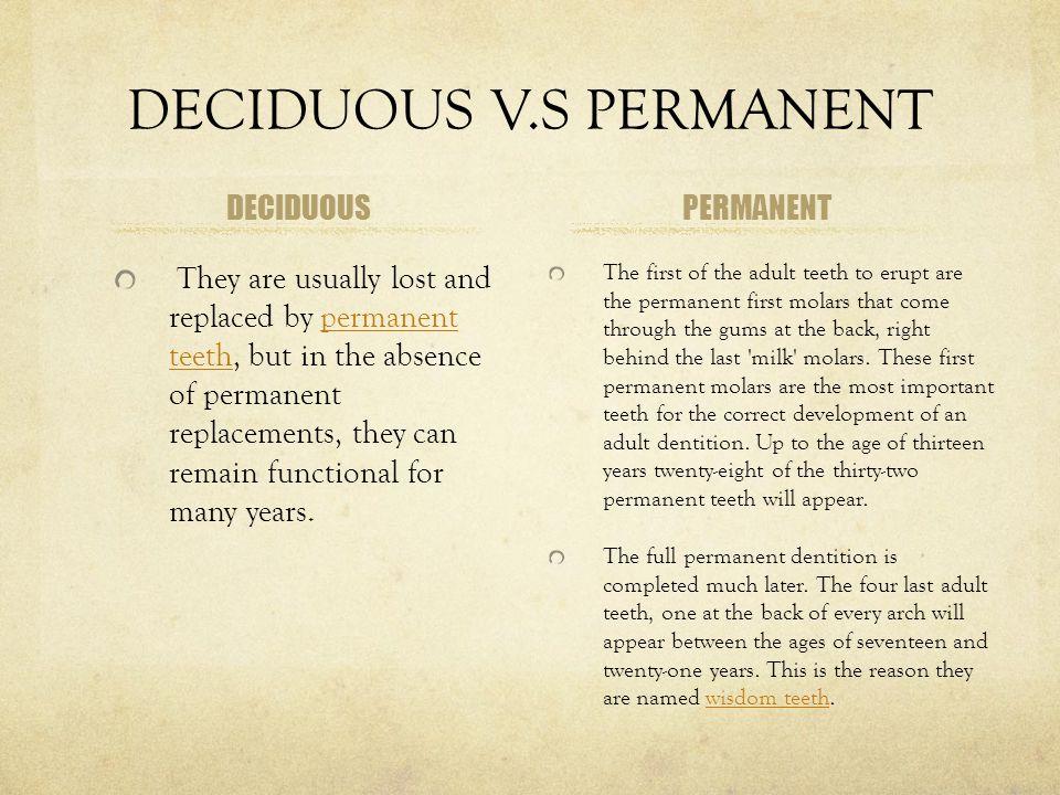 DECIDUOUS V.S PERMANENT