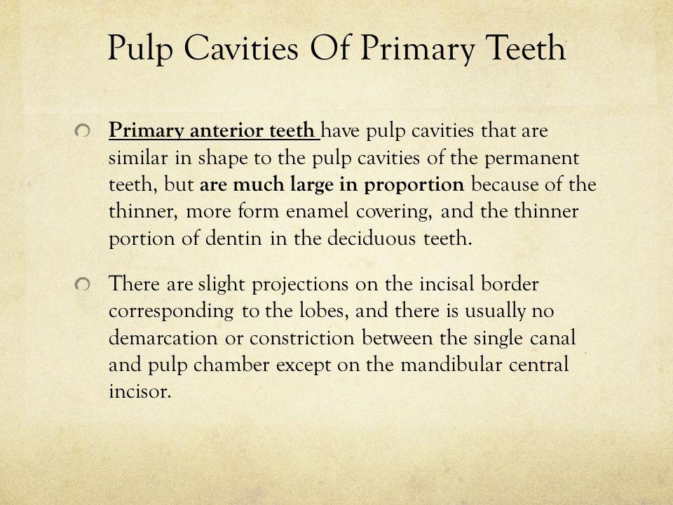Pulp Cavities Of Primary Teeth