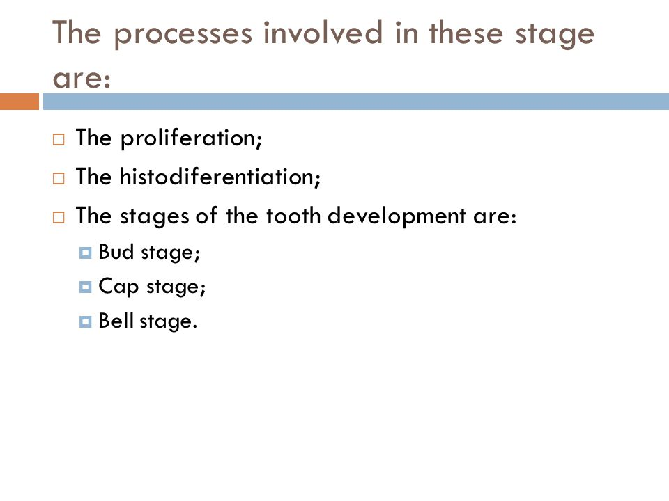 The processes involved in these stage are: