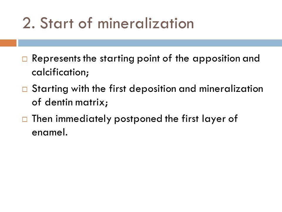 2. Start of mineralization