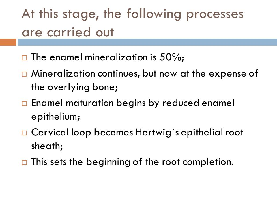 At this stage, the following processes are carried out