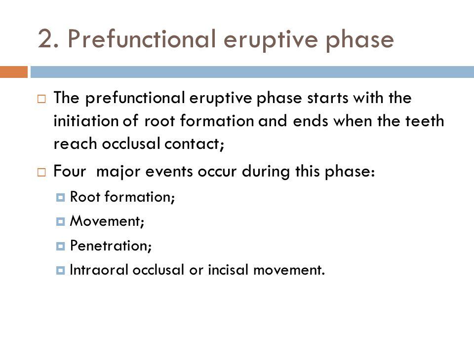 2. Prefunctional eruptive phase
