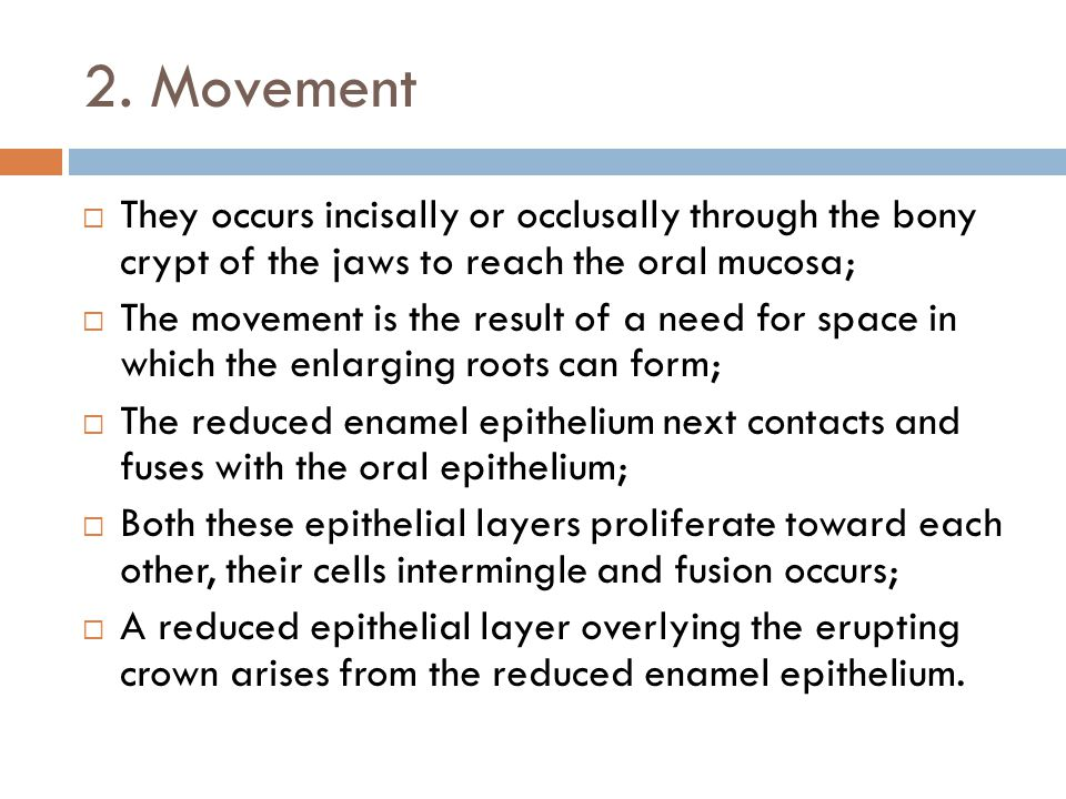 2. Movement They occurs incisally or occlusally through the bony crypt of the jaws to reach the oral mucosa;