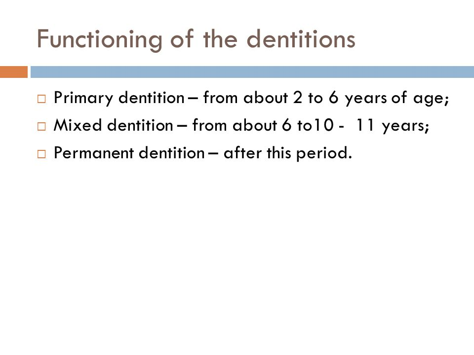 Functioning of the dentitions