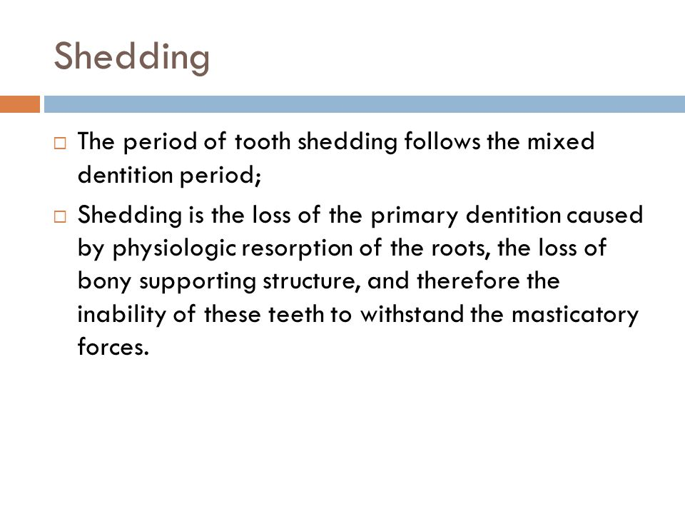 Shedding The period of tooth shedding follows the mixed dentition period;