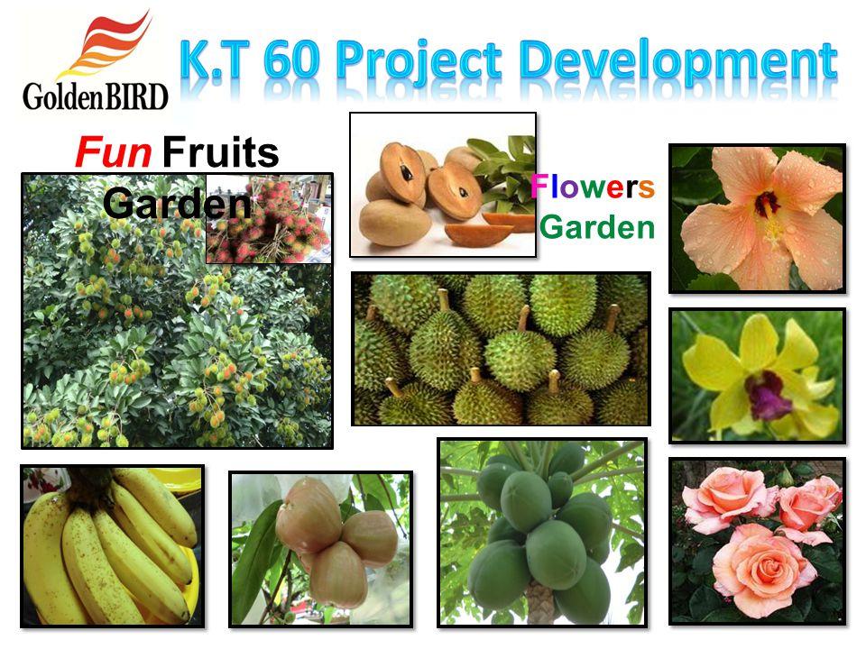 K.T 60 Project Development