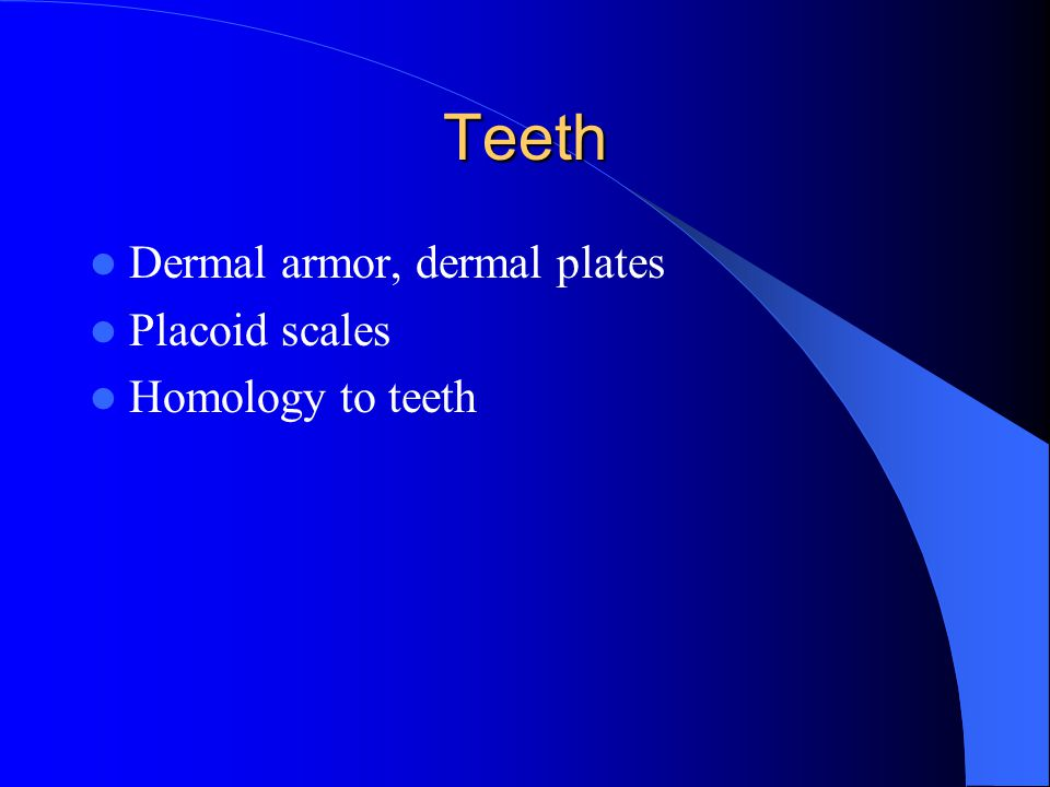 Teeth Dermal armor, dermal plates Placoid scales Homology to teeth